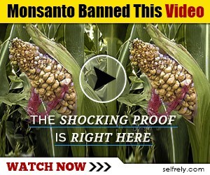 Monsanto-Banned-This-Video-300x250