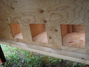 Chicken House Nesting Box Access