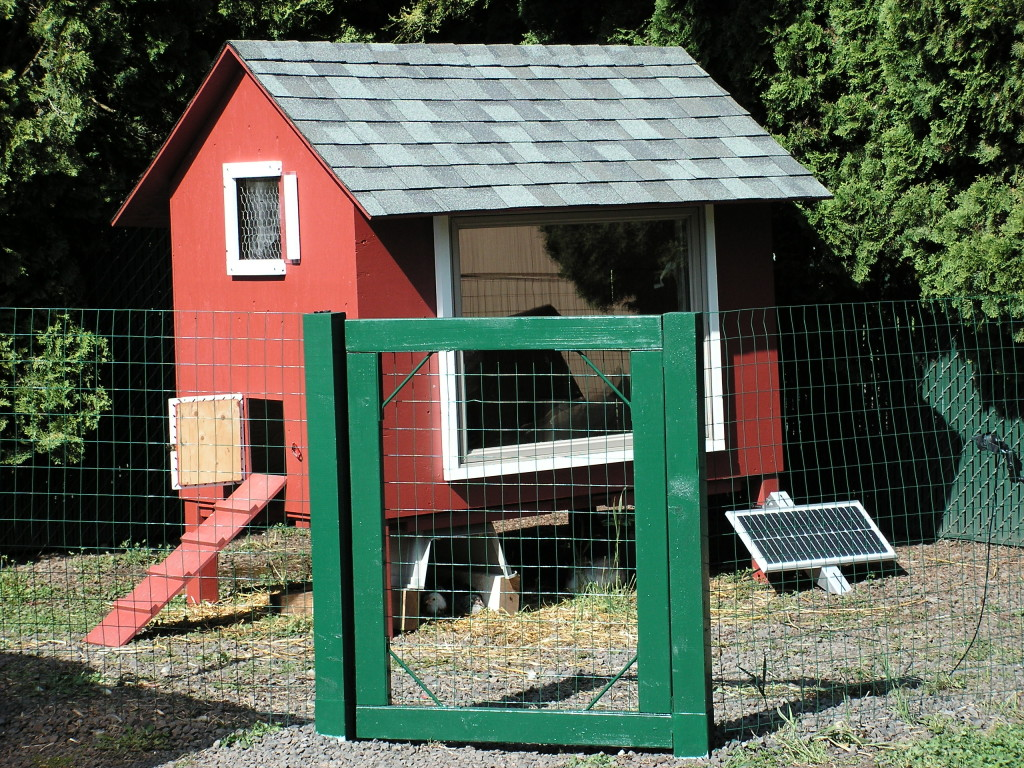 Chicken House and Pen with Gate